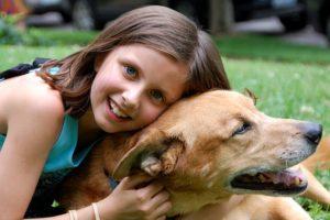 מרכז רימון מומחים בטיפול בפוביה מכלבים