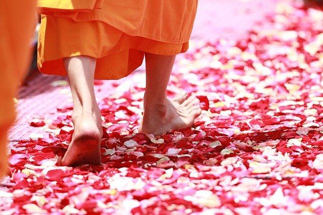 פסיכולוגיה בודהיסטית - איך להתמודד עם אשמה, כעס, חרדה, דיכאון ועוד בראי הפסיכולוגיה הבודהיסטית. מרכז רימון