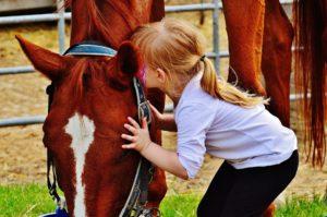 טיפול בעזרת בעלי חיים - מרכז רימון - מומחים בטיפול בבעלי חיים על ידי מטפלים מומחים בעזרת בעלי חיים